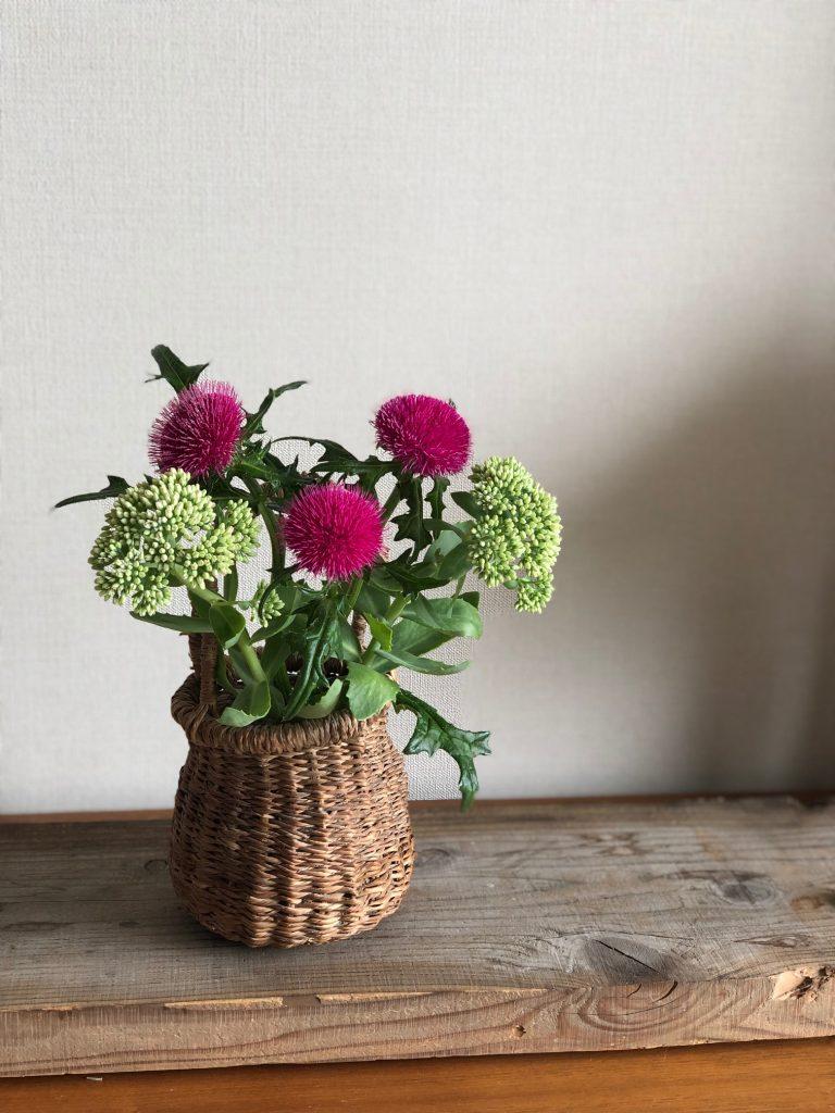 小満-遠田明子の24節気と食卓